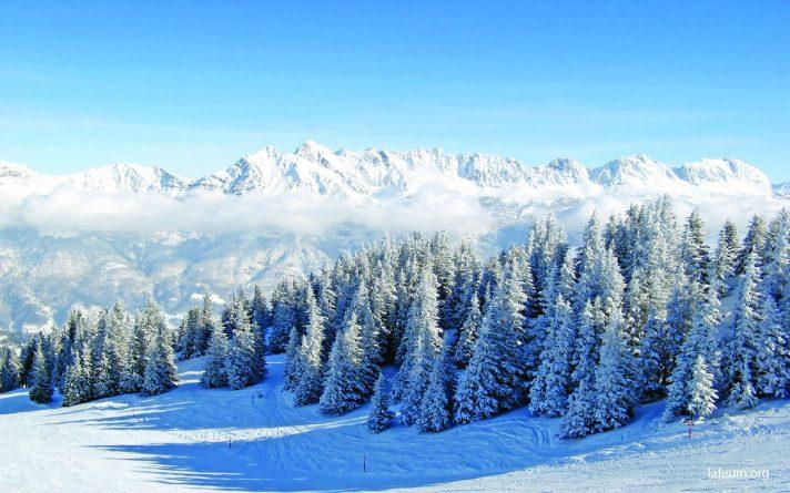 Лес покрытый снегом Лафеюм